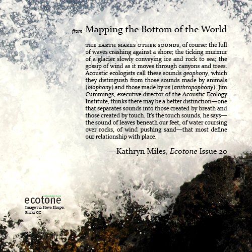 SP16_Blog_Miles_Kathryn_Digital Broadside